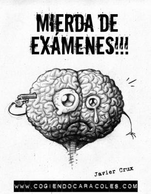 20070830123803-examenes-mierderos.jpg