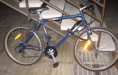 20081208211537-bici-002.jpg